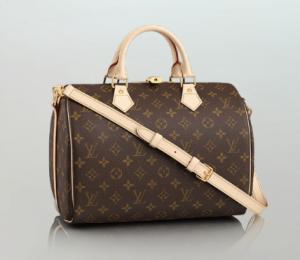 Louis Vuitton Speedy Bandoulière
